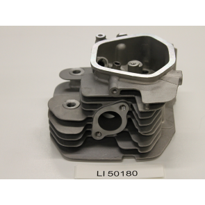12210 Cylinder Head Assy (13HP)